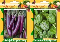 Airex Brinjal Purple Long and Imported Baby Spinach Seed